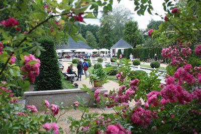 Ostdeutscher Rosengarten Forst