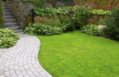 Der perfekte Rasen: Ohne Luft und Nährstoff geht nix