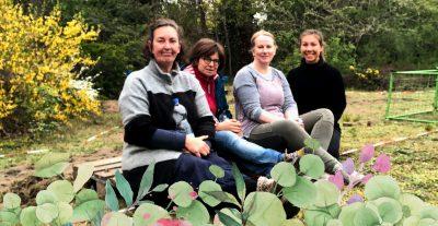 Der Rundschau-Gartenblog