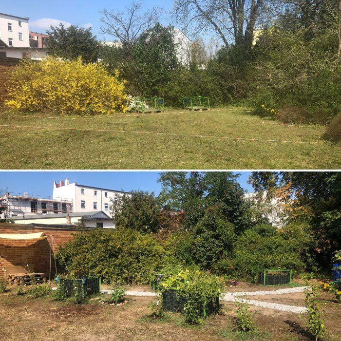 Der Rundschau-Garten: Vorher (April 2019) - Nachher (September 2019)
