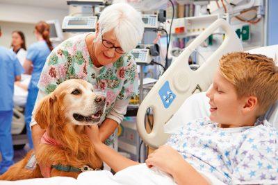 Tiere als Therapeuten – Wenn Tiere heilen helfen